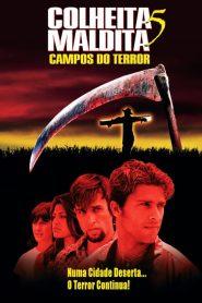 Colheita Maldita 5: Campos do Terror – Filme 1998