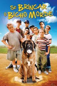 Se Brincar o Bicho Morde – Filme 1993