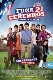 Fuga de cerebros 2 – Filme 2011