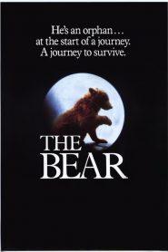 O Urso – Filme 1988