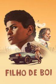 Filho De Boi – Filme 2019