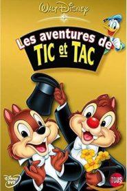 Tico e Teco: Diversão em Dobro – Filme 2004