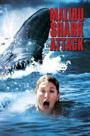 Tubarão de Malibu – Filme 2009