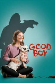 Cão De Guarda – Filme 2020