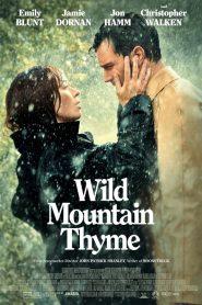 Além das Montanhas – Filme 2020