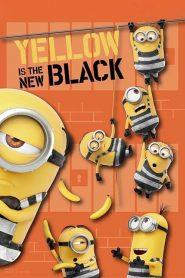 Amarelo é o Novo Preto – Filme 2018