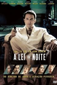 A Lei da Noite – Filme 2016
