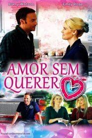 Amor Sem Querer – Filme 2017