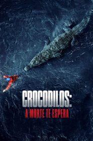 Crocodilos: A Morte Te Espera – Filme 2020