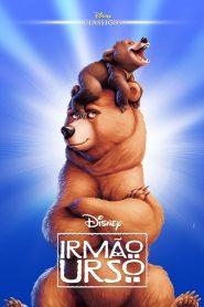 Irmão Urso – Filme 2003