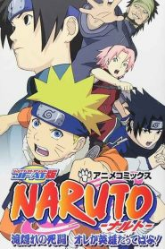Naruto: OVA 2 – Batalha na Cachoeira Escondida. Eu sou o Herói! – Filme 2003