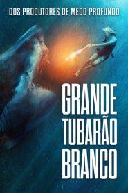 Grande Tubarão Branco – Filme 2021